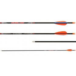 Avalon Tyro Carbon Arrow